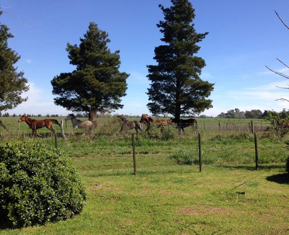 dueño vende - hermosa quinta en remanso con vista al campo