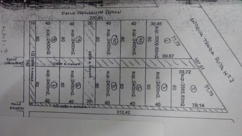 dueño vende o alquila quinta 3,7 ha en juan bautista alberdi