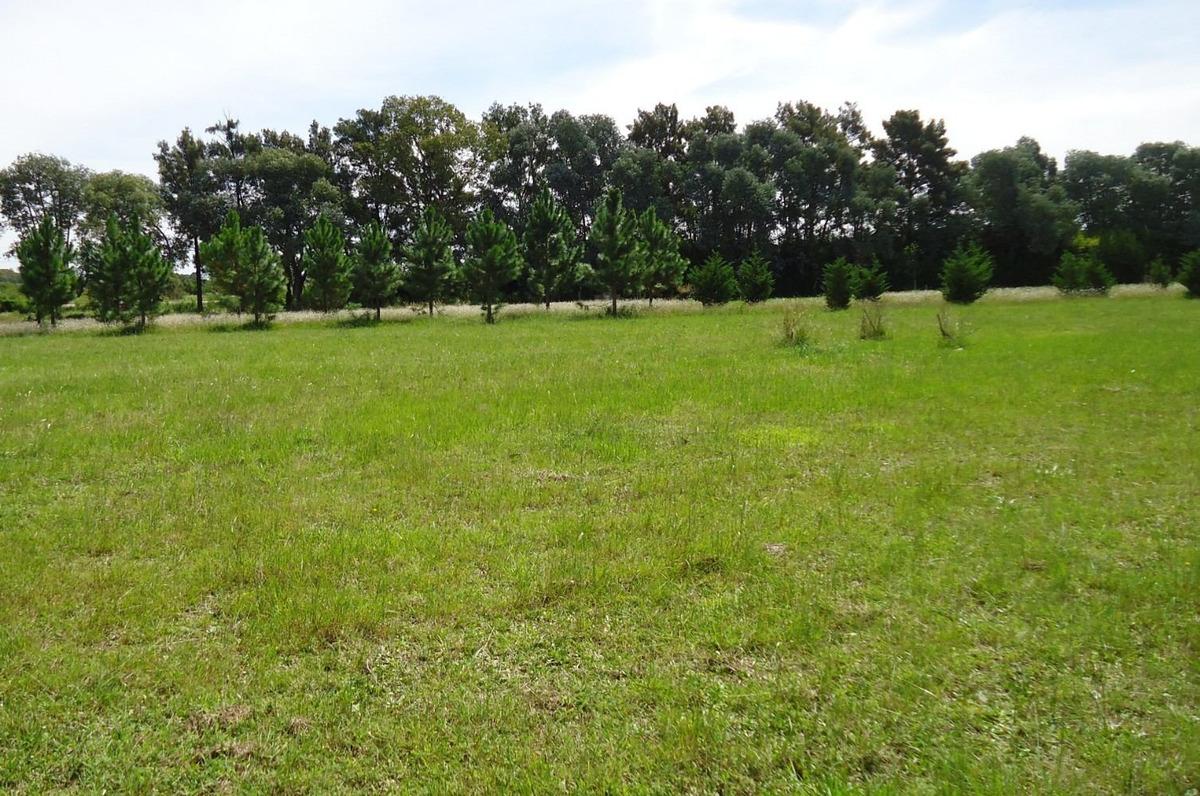 dueño vende terreno 1.062 m2 - barrio el cardal 2