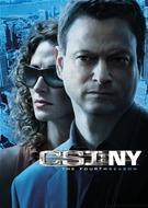dvd -  csi : ny - the fourth season - temporada 4
