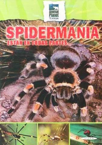 dvd documental de animal planet spidermania arañas mutiregio