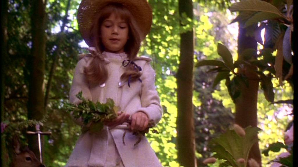Dvd el jardin secreto the secret garden 1993 agnieszka en mercado libre - El jardin secreto pelicula ...