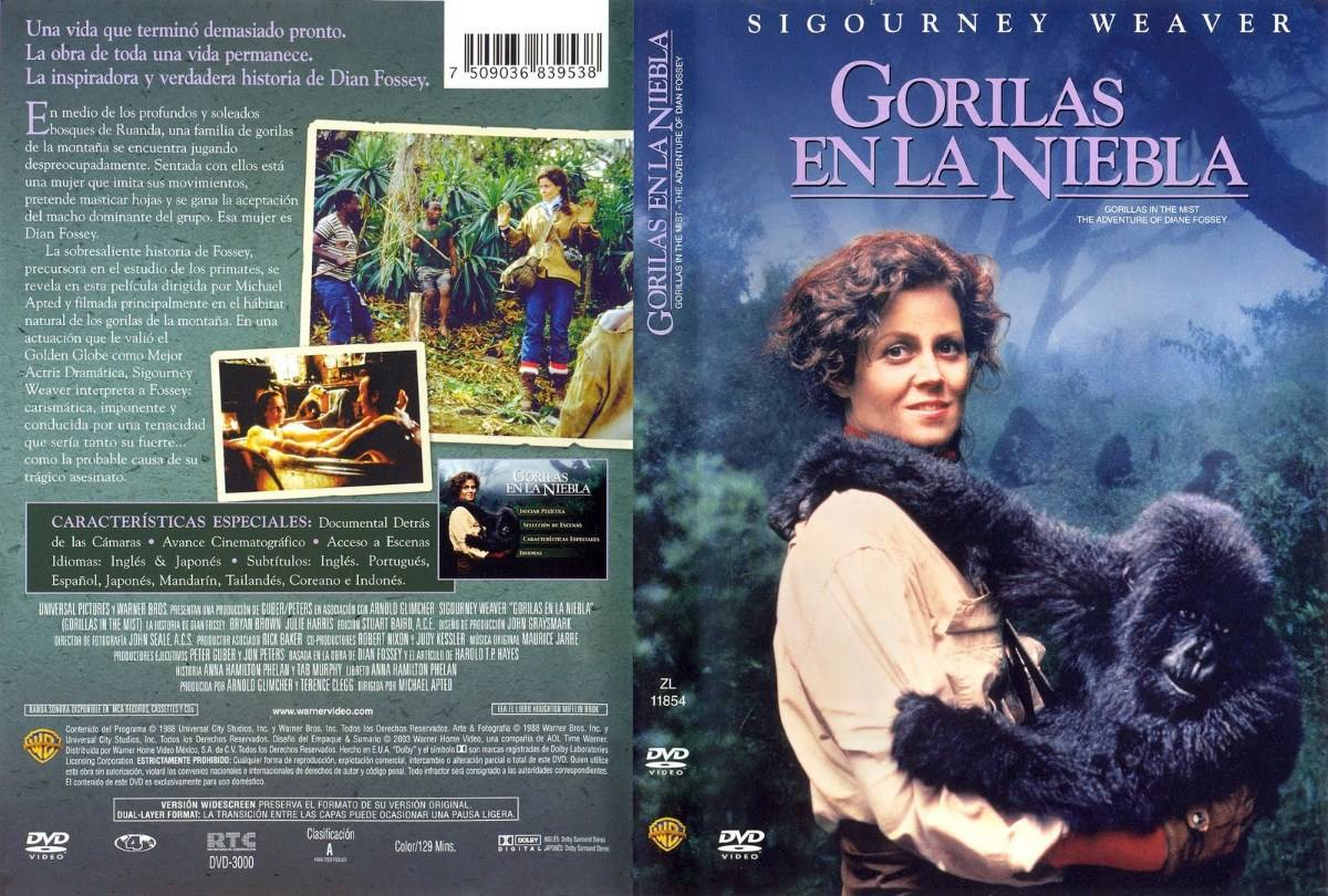 Dvd Gorilas En La Niebla Gorillas In The Mist 1988