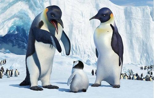 dvd happy feet: o pinguim. novo. original!