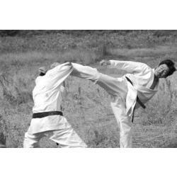 dvd karate shotoka com tatsuya naka do filme kuro obi