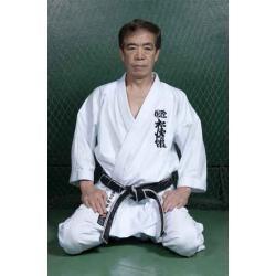 dvd mestre kanazawa karate shotokan socos e chutes.