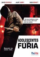 dvd original do filme adolescentes em fúria