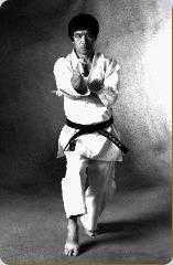 dvd os 26 kata do karate shotokan