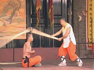 Shaolin Kung Fu Book