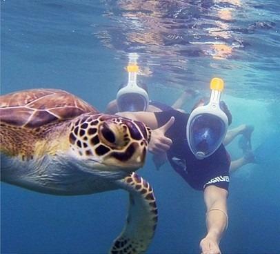 easybreath mascara de snorkeling original