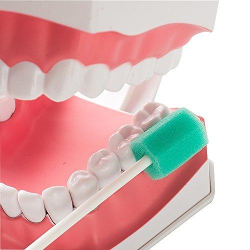 easyinsmile desechables cuidado oral esponja s