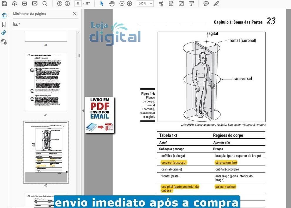 Encantador anatoma y fisiologa pdf ebook componente anatoma de magnfico anatoma y fisiologa pdf ebook adorno imgenes de fandeluxe Gallery