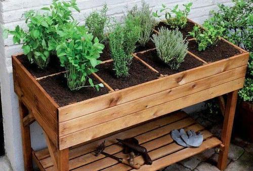 ebook horta orgânica definitiva