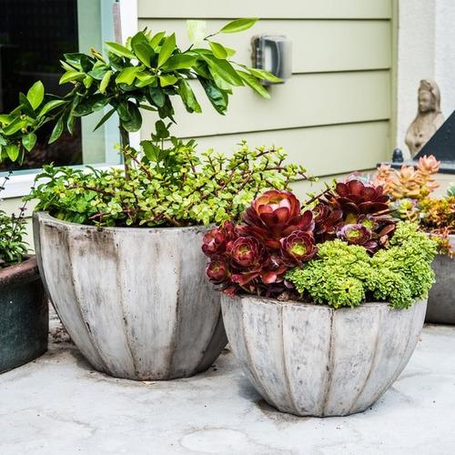 eco-concrete nau planter , handmade in vietnam