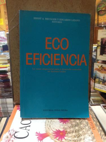 eco eficiencia-ernst a. bruggee y eduardo lizano