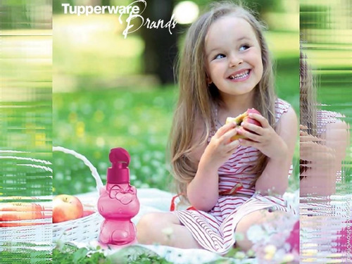 eco kitty 425 ml tupperware
