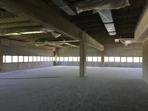 edificio corporativo oficinas - benavidez
