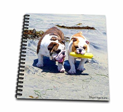 edmond hogge jr perros  el bulldog inglés stroll  libro d