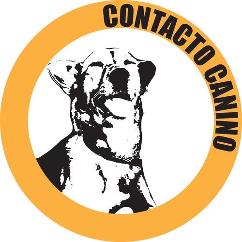 educación y adiestramiento canino - cap.federal y zona norte