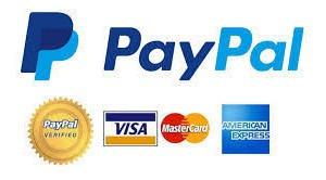 efectiviza tu saldo pay pal paypal(coheto)