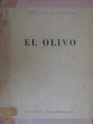 el arcon el olivo - alfonso m. e. ferraro