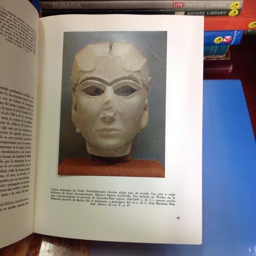 el arte de los pueblos: mesopotamia y asia anterior.