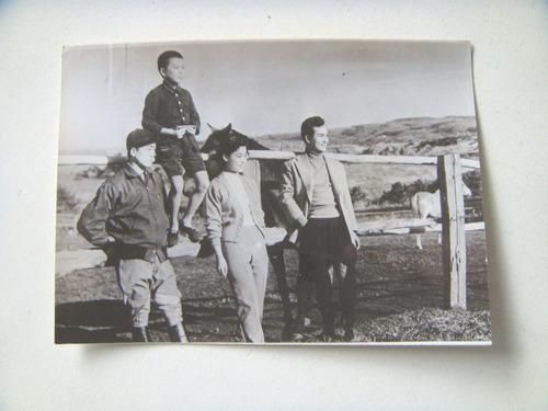 el caballo y el niño. foto original de la película. cine