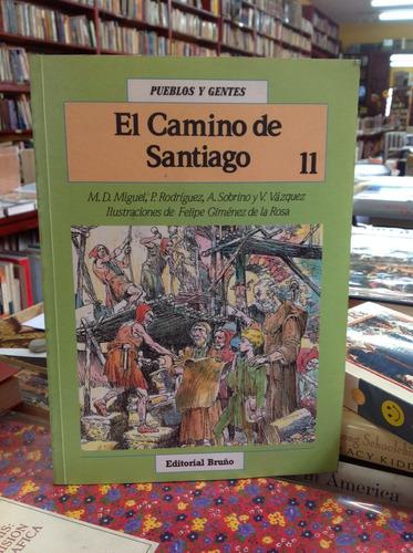el camino del apóstol santiago. historia ilustrada.
