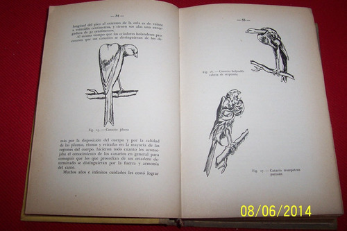 el canario y demas aves canoras de jaula - lucas soto