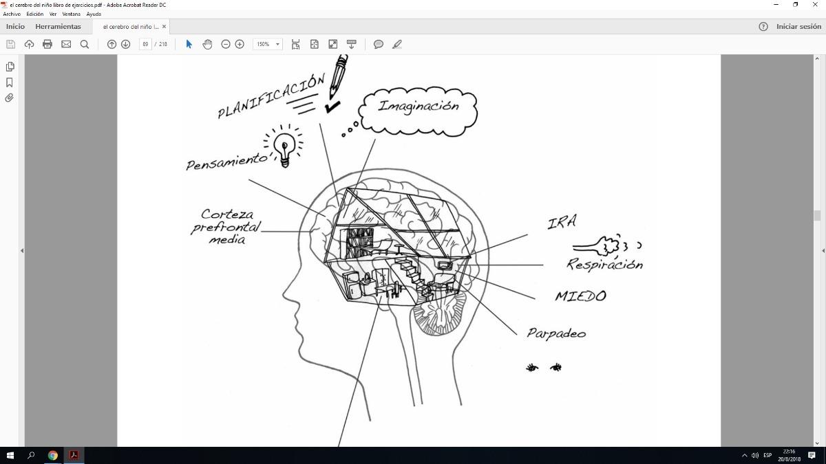 el cerebro del niño libro de ejercicios. Cargando zoom.