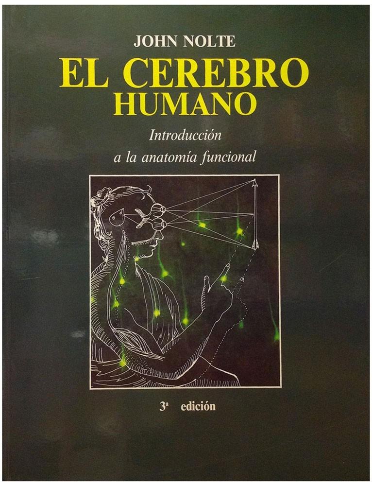 El Cerebro Humano Introduccion A La Anatomia Funcional ...