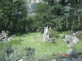 el chalten (santa cruz)