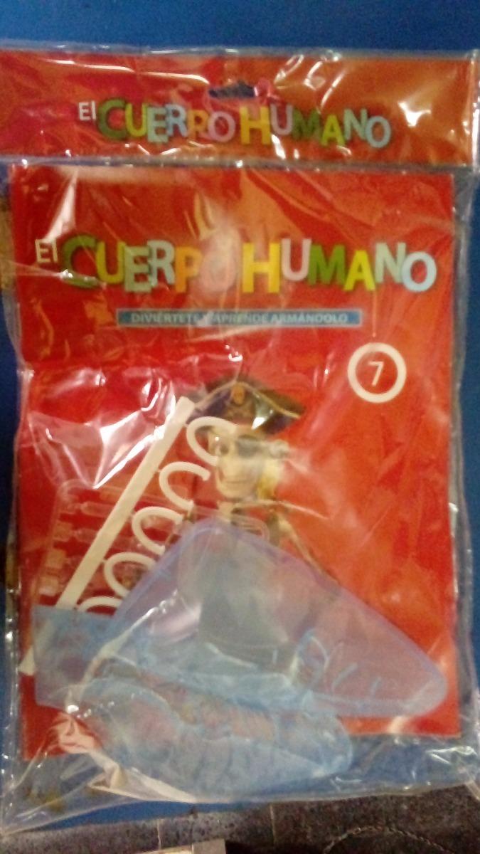 El Cuerpo Humano (rba) # 7. Nuevo. Cerrado. Esqueleto Humano - $ 250 ...