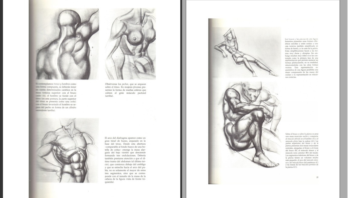 El Dibujo De La Figura Humana A Su Alcance Burne Hogarth Pdf