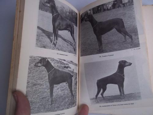 el doberman fred curnow jean faulks perro entrenamiento cría