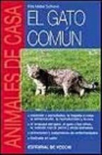 el gato comun . animales en casa