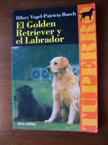 el golden retriever yel labrador-aut-hilary vogel-cupula-rm4