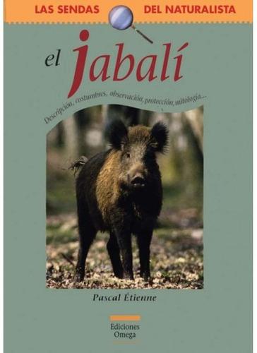 el jabalí(libro zoología)