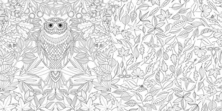 Tipo De Narrador Del Libro El Jardin Secreto | Libro Gratis