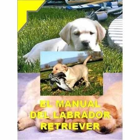 el manual del labrador retriever y adies en pdf 10 libros +