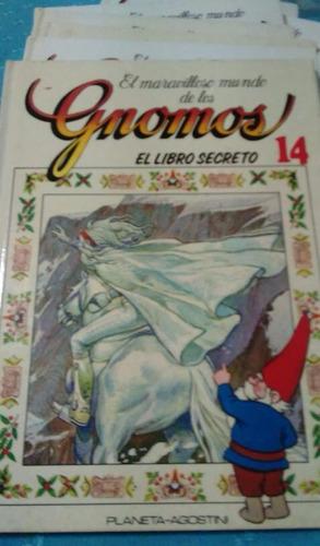 el maravilloso mundo de los gnomos el libro secreto 14