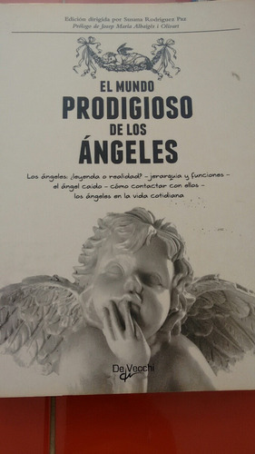 el mundo prodigioso de los ángeles. susana r. [zar]