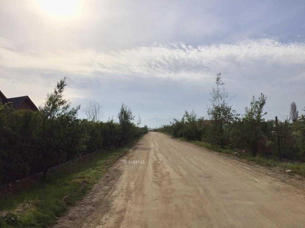 el oliveto - caletera- ruta 78