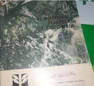 el potencial forestal de colombia