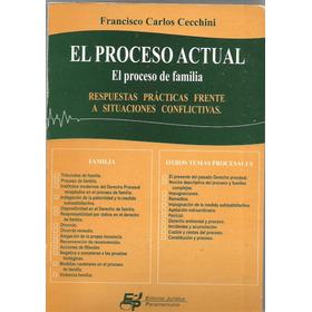 El Proceso Actual - El Proceso De Familia - Cecchini Dyf