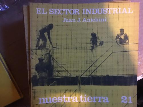 el sector industrial, juan anichini,  nuestra tierra 21