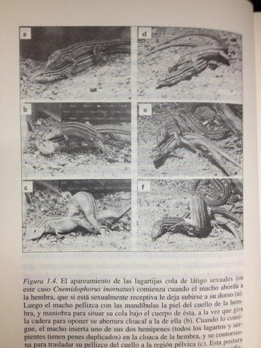 el sexo de las lagartijas - ambrosio garcia leal