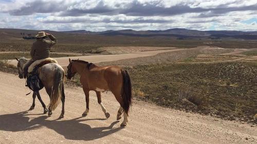 el sol no te espera - libro viaje a caballo