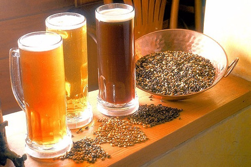 elaboración cerveza artesanal