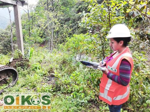 elaboración de licencia ambiental - consultora ambiental